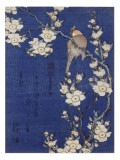 Bouvreuil et cerisier pleureur en fleur Giclee Print by Katsushika Hokusai