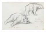 Deux études d'ours Giclée-tryk af Gustave Moreau