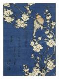 Bouvreuil et cerisier-pleureur Giclée-tryk af Katsushika Hokusai