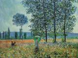 Felder im Frühling Plakater av Claude Monet