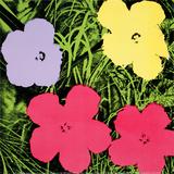 Flowers, c.1970 (1 purple, 1 yellow, 2 pink) Poster von Andy Warhol