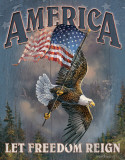 America - Let Freedom Reign Blikskilt