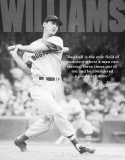 Ted Williams - Baseball Tin Sign