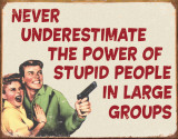 Ephemera - Stupid People Blechschild