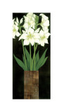 Perfect White Lilies Giclee Print by R. Rafferty
