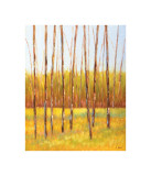 Tall Trees I (left) Giclee Print by Libby Smart