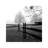 Valla en la niebla Lámina giclée por Harold Silverman
