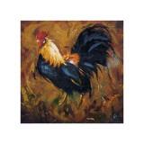 Rooster, no. 502 Giclée-tryk af  Roz