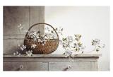 Fleurs de printemps Poster par Ray Hendershot
