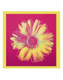 Daisy, c.1982 (Fuschia and Yellow) Plakat af Andy Warhol