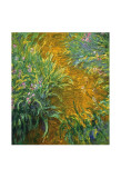 The Path in the Iris Garden Posters av Claude Monet