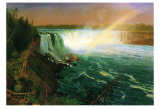 Niagara Falls Posters by Albert Bierstadt