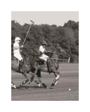 Polo In The Park IV Affiches par Ben Wood