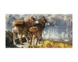 Return of the Wild Schilderijen van Kalon Baughan