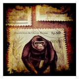 Gorilla Stamp Kunstdrucke von Jean-François Dupuis