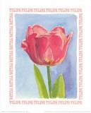 Message in a Bottle, Tulipa Kunstdrucke von A. Vargas