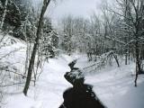 A Winter View of Rush Brook, Camel's Hump State Park, Vermont Reproduction photographique par James P. Blair