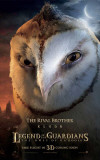 The Legend of the Guardians: The Owls of Ga'Hoole - Kludd Masterprint
