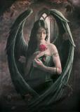 Ann Stokes Angel Rose Poster