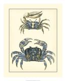 Antique Blue Crabs II Giclée-tryk