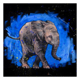Bebê elefante Pôsteres