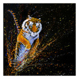 Tiger Leaping Posters