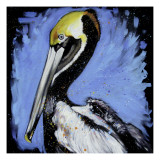 Brown Pelican Arte