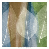Leaf Structure II Art by John Rehner