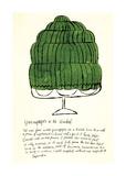 Wild Raspberries, c.1959 (green) Giclée-tryk af Andy Warhol