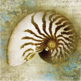 Nautical Beauty Poster von Keith Mallett