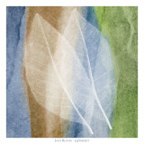 Leaf Structure I Posters by John Rehner