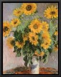 Sunflowers, c.1881 Impressão em tela emoldurada por Claude Monet