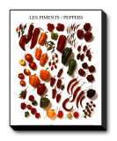 Peppers Stretched Canvas Print