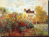 The Artist's Garden in Argenteuil Stretched Canvas Print by Claude Monet