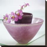 Orchideen Bedruckte aufgespannte Leinwand von H. Orth
