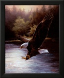 Eagle Prey Prints by T. C. Chiu