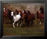 Wild Horses Poster von Ron Kimball
