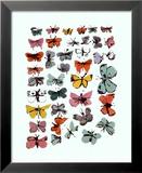 Vlinders, 1955 Poster van Andy Warhol