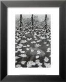 Trois Mondes Posters par M. C. Escher