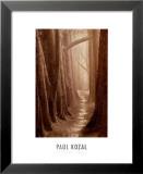 Cypress Trail Prints by Paul Kozal