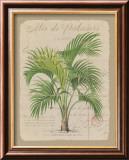 Alee de Palmiers Posters by Hugo Wild