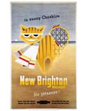 New Brighton Cat Láminas