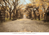 Central Park I Posters por Tim Wampler