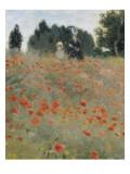 Wilde Mohnblumen Giclée-Premiumdruck von Claude Monet