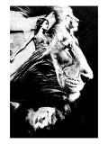 To the Lions Reproduction giclée Premium par Alex Cherry