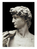 David Plakater av  Michelangelo