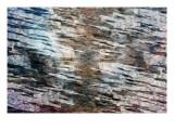 Reflexion Giclée-Premiumdruck von Alex Cherry