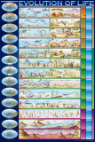 Evolution of Life Affiche