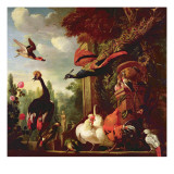 A Peacock, Peahen and Other Exotic Birds and Poultry on a Terrace Giclée-tryk af Melchior de Hondecoeter