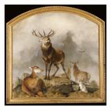 Scene in Braemar - Highland Deer Giclée-tryk af Edwin Henry Landseer